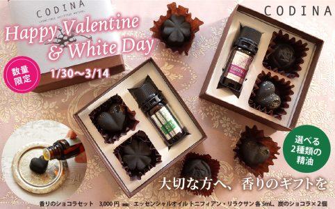 【数量限定】香りのショコラセット